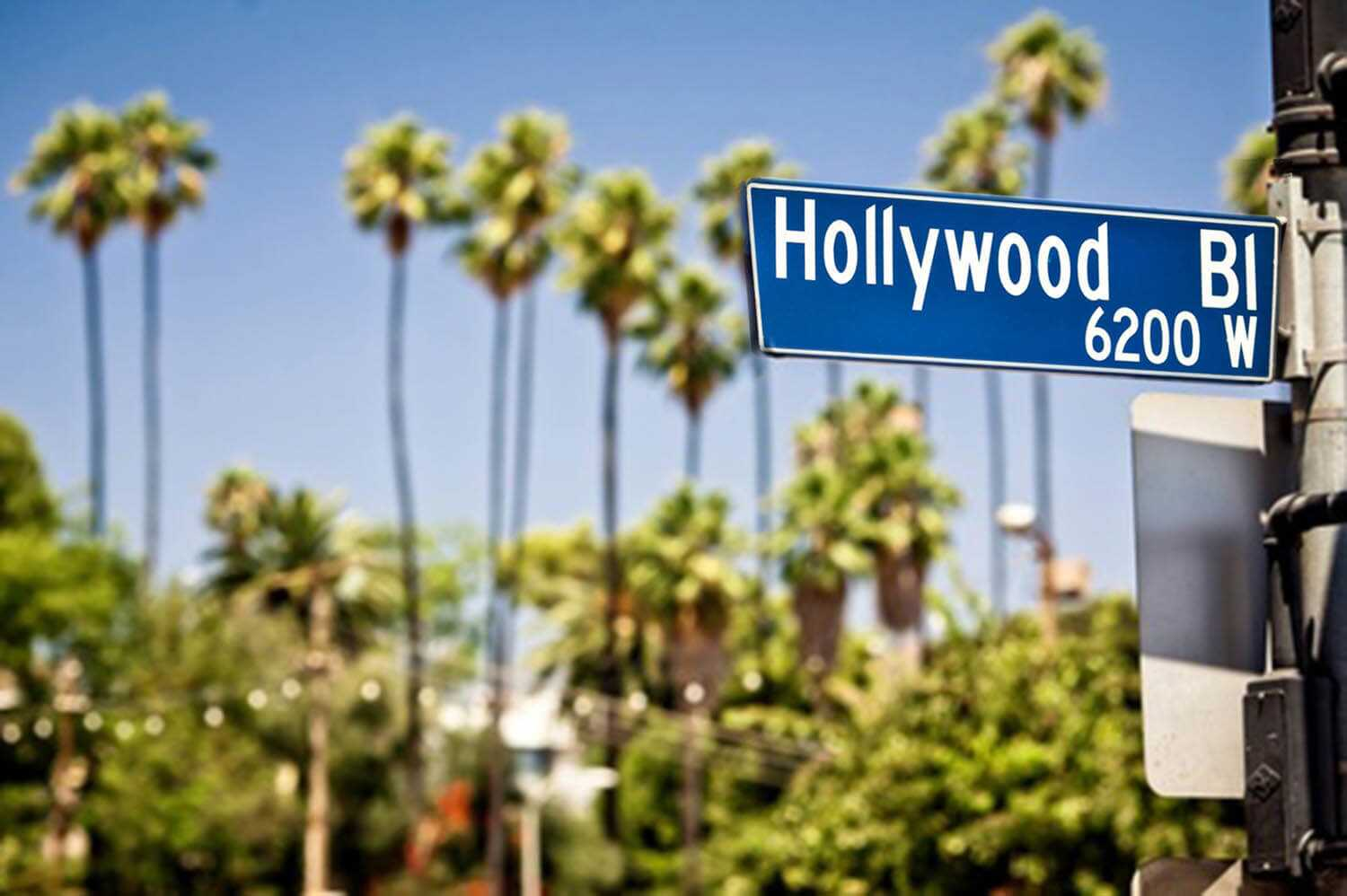 001-hollywoodblvd_plus